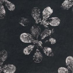 Mutina_-Chymia-Ophelia-Black-30x30-1X-choice