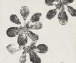 Mutina_-Chymia-Ophelia-white-30x30-2nd-choice